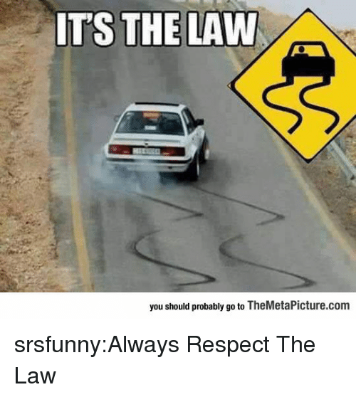 Respect, Tumblr, and Blog: ITS THE LAW  you should probably go to TheMetaPicture.com srsfunny:Always Respect The Law