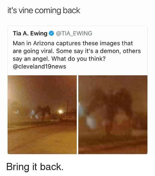 Vine, Angel, and Arizona: it's vine coming back  Tia A. Ewing @TIA EWING  Man in Arizona captures these images that  are going viral. Some say it's a demon, others  say an angel. What do you think?  @cleveland19news Bring it back.