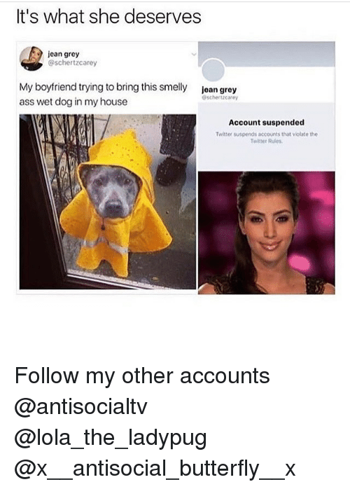 jean grey: It's what she deserves  jcan grey  @schertzcarey  My boyfriend trying to bring this smelly  ass wet dog in my house  jean grey  schertzcarey  Account suspended  Twitter suspends accounts that viotate the  Twitter Rules Follow my other accounts @antisocialtv @lola_the_ladypug @x__antisocial_butterfly__x