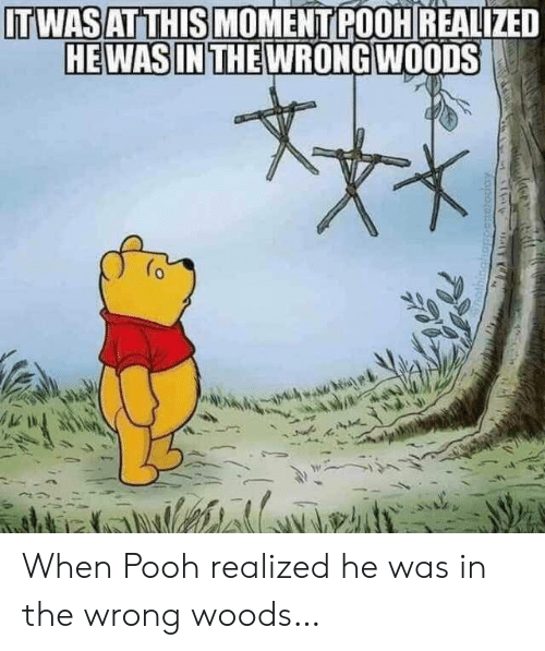 Moment, Woods, and This: ITWASAT THIS MOMENT POOHREALIZED  HEWAS IN THE WRONG WOODS When Pooh realized he was in the wrong woods…