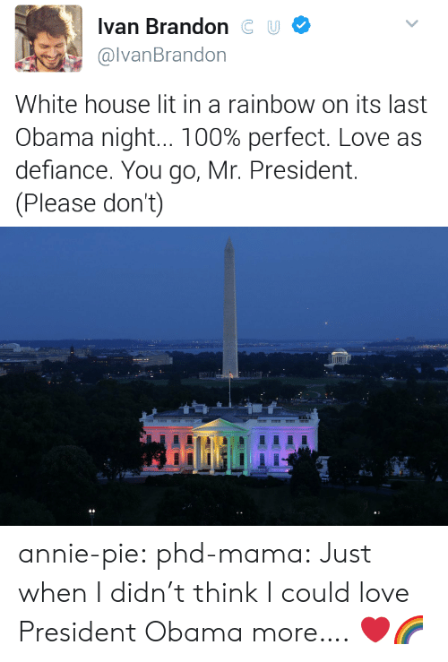 Defiance: Ivan BrandonC U  @lvanBrandon  White house lit in a rainbow on its last  Obama night 100% perfect. Love as  defiance. You go, Mr. President.  (Please don't) annie-pie:  phd-mama: Just when I didn't think I could love President Obama more….  ❤️🌈