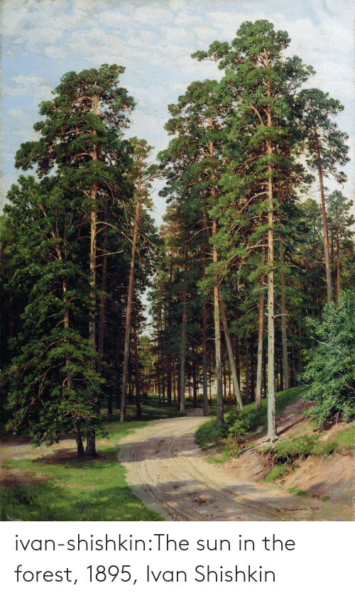 the sun: ivan-shishkin:The sun in the forest, 1895, Ivan Shishkin