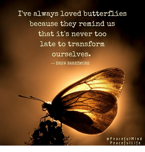 Drew Barrymore: I've always loved butterflies  because they remind us  that it's never too  late to transform  ourse.Lves.  DREW BARRYMORE  P e a c e f u l M i n d  P e a c e f u l Life