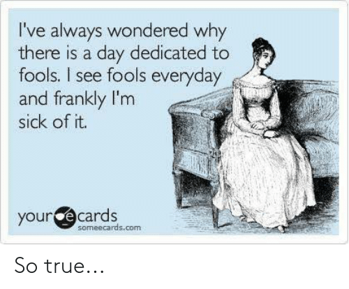 frankly: I've always wondered why  there is a day dedicated to  fools. I see fools everyday  and frankly I'm  sick of it.  your  e cards  someecards.com So true...