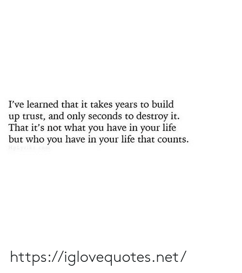 Life, Net, and Who: I've learned that it takes years to build  up trust, and only seconds to destroy it.  That it's not what you have in your life  but who you have in your life that counts https://iglovequotes.net/