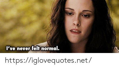 Never, Net, and Normal: I've never felt normal. https://iglovequotes.net/