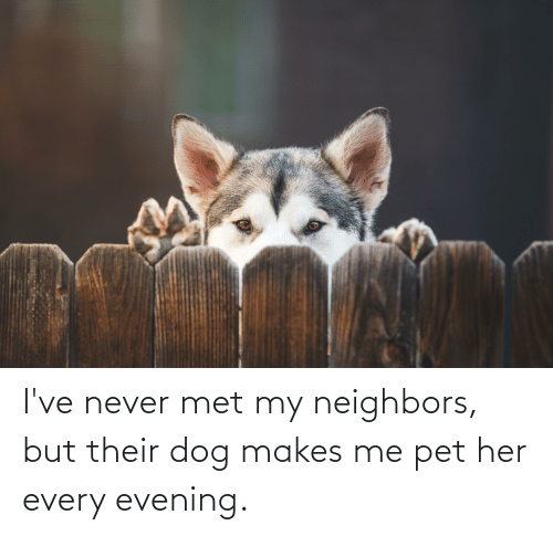 Makes Me: I've never met my neighbors, but their dog makes me pet her every evening.
