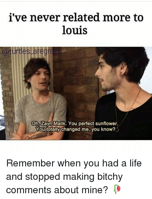 Zayn Malik: i've never related more to  louis  a turtles are gre  On Zayn Malik. You perfect sunflower.  Mou totally changed me, you know? Remember when you had a life and stopped making bitchy comments about mine? 🥀