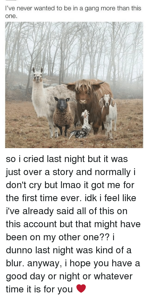 Memes, Gang, and 🤖: I've never wanted to be in a gang more than this  One. so i cried last night but it was just over a story and normally i don't cry but lmao it got me for the first time ever. idk i feel like i've already said all of this on this account but that might have been on my other one?? i dunno last night was kind of a blur. anyway, i hope you have a good day or night or whatever time it is for you ❤
