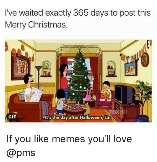 Christmas, Gif, and Halloween: I've waited exactly 365 days to post this  Merry Christmas.  GIF  -It's the day after Halloween, Lin If you like memes you'll love @pms