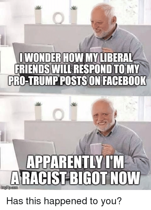 Bigotism: IWONDER HOW MY LIBERAL  FRIENDS WILL  ON TO MY  PRO-TRUMP POSTSON FACEBOOK  APPARENTLY I'M  nngilipcom  BIGOT NOW Has this happened to you?