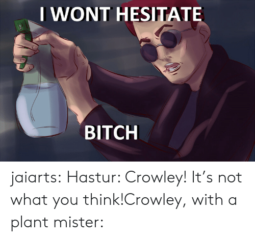 hesitate: IWONT HESITATE  BITCH jaiarts:  Hastur: Crowley! It's not what you think!Crowley, with a plant mister: