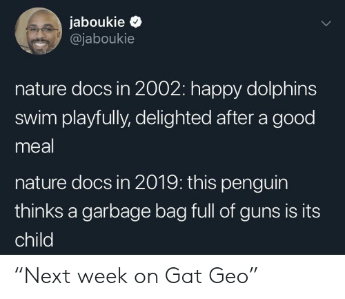 """delighted: jaboukie >  @jaboukie  nature docs in 2002: happy dolphins  swim playfully, delighted after a good  meal  nature docs in 2019: this penguin  thinks a garbage bag full of guns is its  child """"Next week on Gat Geo"""""""