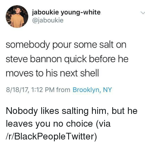 Blackpeopletwitter, Brooklyn, and White: jaboukie young-white  @jaboukie  somebody pour some salt on  steve bannon quick before he  moves to his next shell  8/18/17, 1:12 PM from Brooklyn, NY <p>Nobody likes salting him, but he leaves you no choice (via /r/BlackPeopleTwitter)</p>