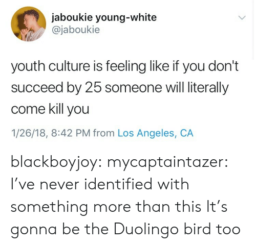 Like If You: jaboukie young-white  @jaboukie  youth culture is feeling like if you don't  succeed by 25 someone will literally  come kill you  1/26/18, 8:42 PM from Los Angeles, CA blackboyjoy: mycaptaintazer: I've never identified with something more than this  It's gonna be the Duolingo bird too