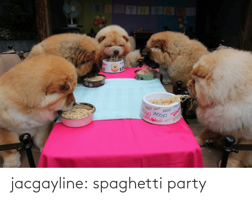 Party: jacgayline:  spaghetti party
