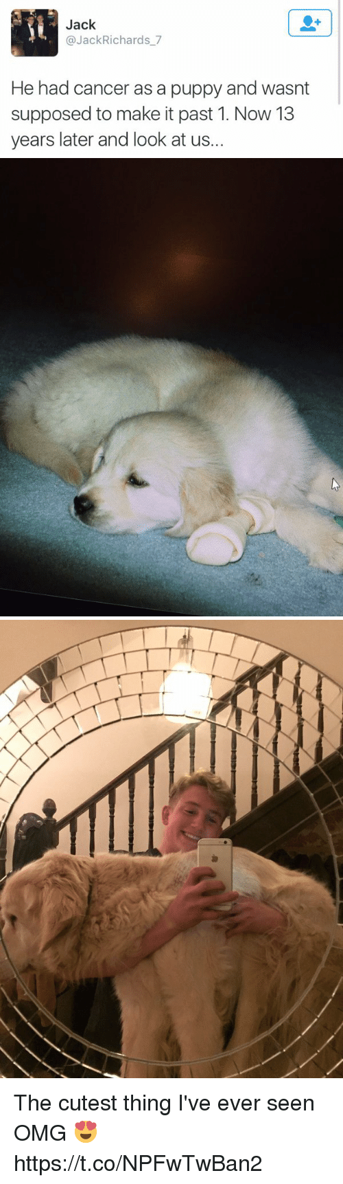 Seens: Jack  @JackRichards_7  He had cancer as a puppy and wasnt  supposed to make it past 1. Now 13  years later and look at us. The cutest thing I've ever seen OMG 😍 https://t.co/NPFwTwBan2