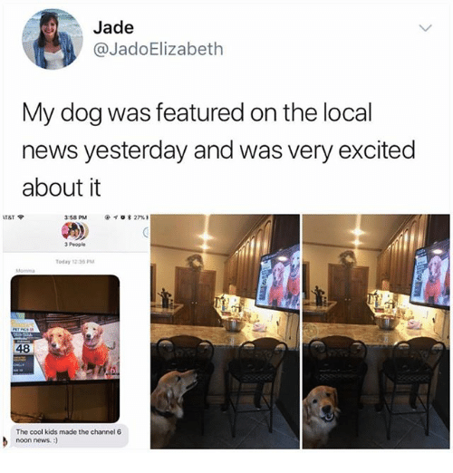 The Cool Kids: Jade  @JadoElizabeth  My dog was featured on the local  news yesterday and was very excited  about it  3:58 PM  @イσ* 27% 1  3 People  Today 12:36 PM  48  The cool kids made the channel 6  noon news.:)