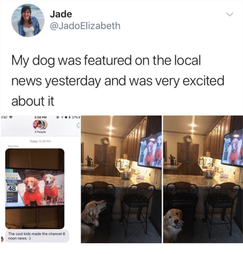 News, At&t, and Cool: Jade  @JadoElizabeth  My dog was featured on the local  news yesterday and was very excited  about it  AT&T令  3:58 PM  @イ0 * 27%3  3 People  Today 12:36 PM  PET PICs  48  CHLLY  NW 10  The cool kids made the channel 6  noon news.:)