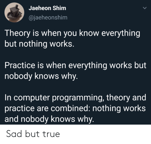 Knows: Jaeheon Shim  @jaeheonshim  Theory is when you know everything  but nothing works.  Practice is when everything works but  nobody knows why.  In computer programming, theory and  practice are combined: nothing works  and nobody knows why. Sad but true