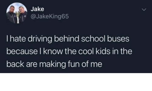 cool kids: Jake  @JakeKing65  I hate driving behind school buses  because l know the cool kids in the  back are making fun of me
