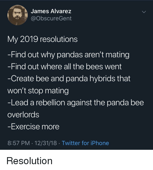 Iphone, Twitter, and Panda: James Alvarez  @ObscureGent  My 2019 resolutions  Find out why pandas aren't mating  -Find out where all the bees went  Create bee and panda hybrids that  won't stop mating  -Lead a rebellion against the panda bee  overlords  Exercise more  8:57 PM 12/31/18 Twitter for iPhone Resolution
