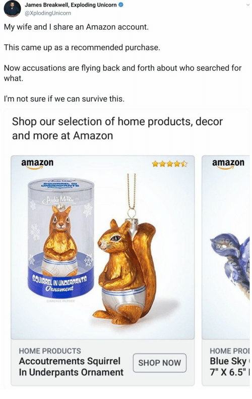 "Selection: James Breakwell, Exploding Unicorn  @XplodingUnicorn  My wife and I share an Amazon account  This came up as a recommended purchase.  Now accusations are flying back and forth about who searched for  what  I'm not sure if we can survive this.  Shop our selection of home products, decor  and more at Amazon  amazon  amazon  DOUIRREL N  UNDR NTO  CAnchie Meter  SOUIRREL IN UNDERDANTS  Ornament  CARCHIE MCPHEE  HOME PRO  Blue Sky  7"" X 6.5""  HOME PRODUCTS  Accoutrements Squirrel  In Underpants Ornament  SHOP NOW"