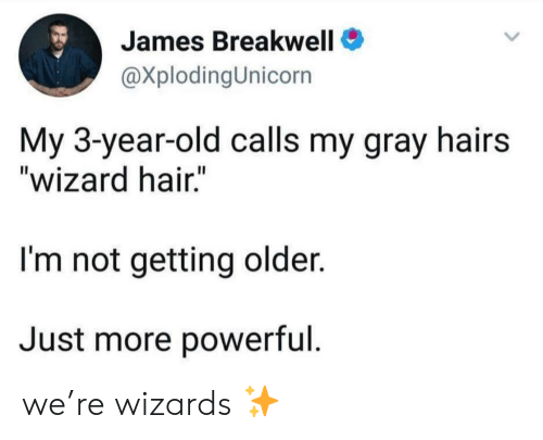 "3 Year Old: James Breakwell  @XplodingUnicorn  My 3-year-old calls my gray hairs  ""wizard hair.""  I'm not getting older.  Just more powerful we're wizards ✨"
