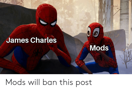 Dank Memes, James, and Mods: James Charles  Mods Mods will ban this post