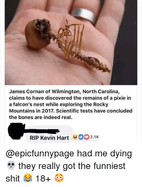 Me Dying: James Cornan of Wilmington, North Carolina,  claims to have discovered the remains of a pixie in  a falcon's nest while exploring the Rocky  Mountains in 2017. Scientific tests have concluded  the bones are indeed real  RIP Kevin Hart2.1K @epicfunnypage had me dying 💀 they really got the funniest shit 😂 18+ 😳