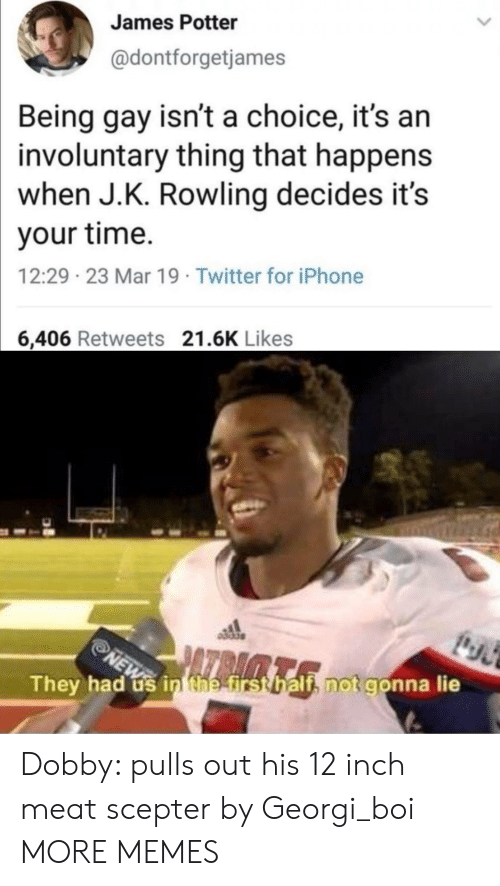 Dank, Iphone, and Memes: James Potter  @dontforgetjames  Being gay isn't a choice, it's arn  involuntary thing that happens  when J.K. Rowling decides it's  your time.  12:29 23 Mar 19 Twitter for iPhone  6,406 Retweets 21.6K Likes  They had us in tnetirst halt notgonn  a lie Dobby: pulls out his 12 inch meat scepter by Georgi_boi MORE MEMES