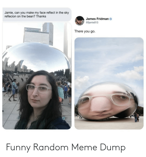 Make My: Jamie, can you make my face reflect in the sky  reflecion on the bean? Thanks  James Fridman  @fjamie013  There you go. Funny Random Meme Dump
