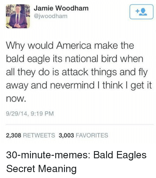 America, Philadelphia Eagles, and Memes: Jamie Woodham  @jwoodham  1  Why would America make the  bald eagle its national bird when  all they do is attack things and fly  away and nevermind I think I get it  now.  9/29/14, 9:19 PM  2,308 RETWEETS 3,003 FAVORITES 30-minute-memes:  Bald Eagles Secret Meaning