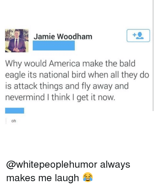America, Memes, and Eagle: Jamie Woodham  Why would America make the bald  eagle its national bird when all they do  is attack things and fly away and  nevermind I think I get it now.  oh @whitepeoplehumor always makes me laugh 😂