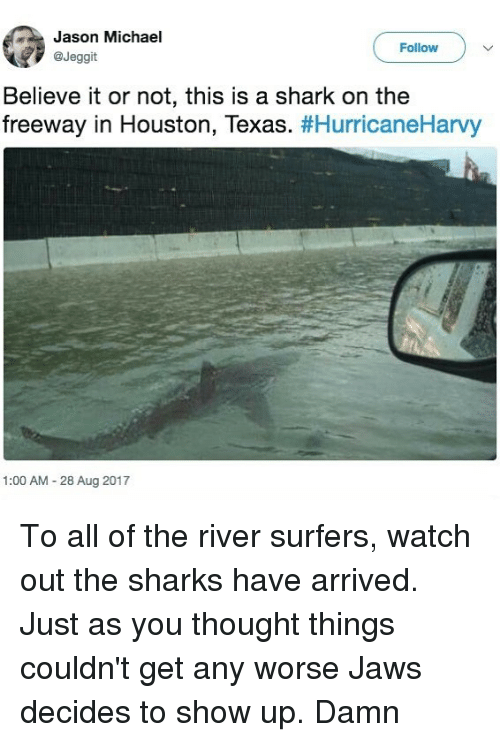 Sharked: Jason Michael  @Jeggit  Follow  Believe it or not, this is a shark on the  freeway in Houston, Texas. #HurricaneHarvy  1:00 AM 28 Aug 2017 To all of the river surfers, watch out the sharks have arrived. Just as you thought things couldn't get any worse Jaws decides to show up. Damn