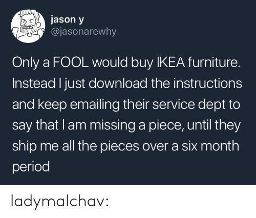 Dept: jason y  @jasonarewhy  Only a FOOL would buy IKEA furniture.  Instead I just download the instructions  and keep emailing their service dept to  say that lam missing a piece, until they  ship me all the pieces over a six month  period ladymalchav: