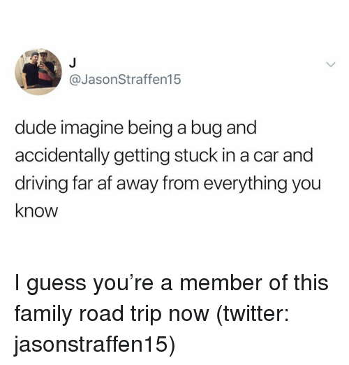 Af, Driving, and Dude: @JasonStraffen15  dude imagine being a bug and  accidentally getting stuck in a car and  driving far af away from everything you  know I guess you're a member of this family road trip now (twitter: jasonstraffen15)