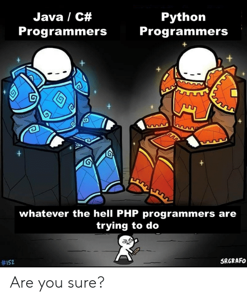 You Sure: Java / C#  Python  Programmers  Programmers  +  +  whatever the hell PHP programmers are  trying to do  SRGRAFO  Are you sure?