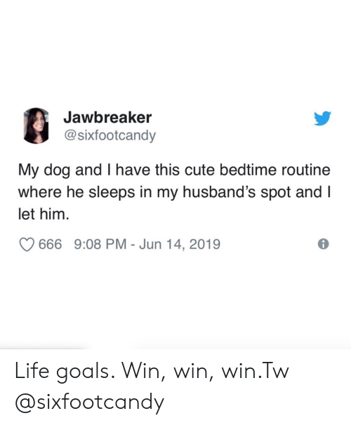 Sleeps: Jawbreaker  @sixfootcandy  My dog and I have this cute bedtime routine  where he sleeps in my husband's spot and I  let him  666 9:08 PM - Jun 14, 2019 Life goals. Win, win, win.Tw @sixfootcandy