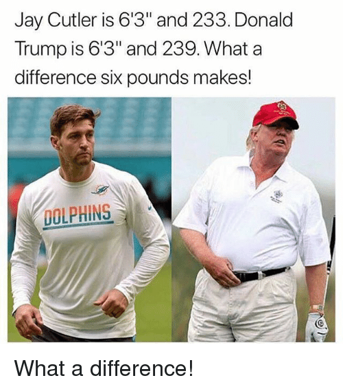 """Donald Trump, Gym, and Jay: Jay Cutler is 6'3"""" and 233. Donald  Trump is 6'3"""" and 239. What a  difference six pounds makes!  DOLPHINS What a difference!"""
