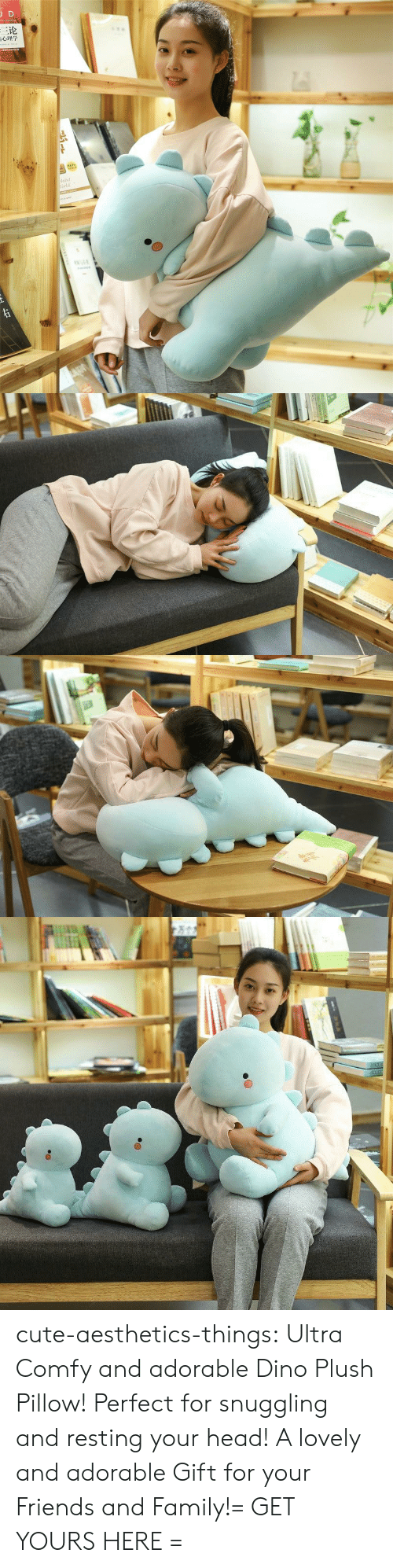Cute, Family, and Friends: JD  三论  laint  orld  TNAR  ww.e cute-aesthetics-things:  Ultra Comfy and adorable Dino Plush Pillow! Perfect for snuggling and resting your head! A lovely and adorable Gift for your Friends and Family!= GET YOURS HERE =