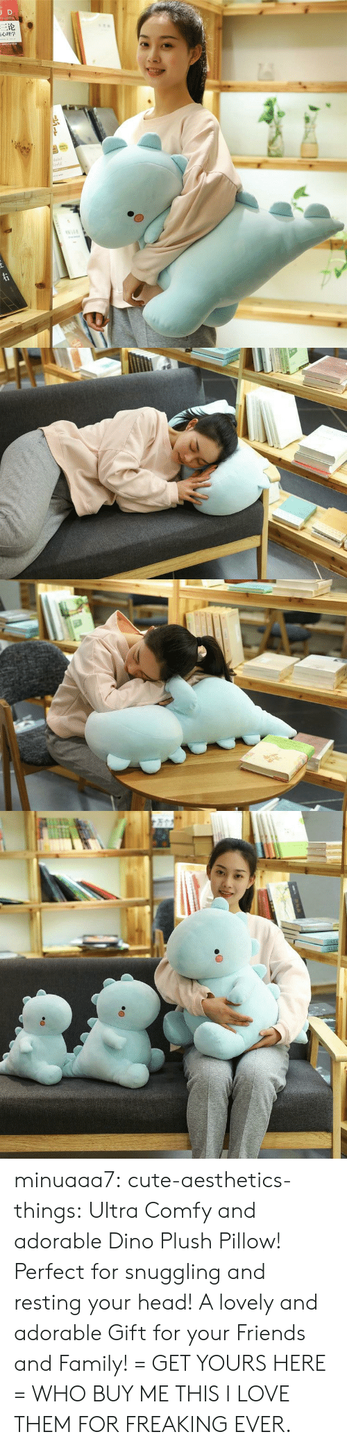 dino: JD  三论  laint  orld  TNAR  ww.e minuaaa7:  cute-aesthetics-things:  Ultra Comfy and adorable Dino Plush Pillow! Perfect for snuggling and resting your head! A lovely and adorable Gift for your Friends and Family! = GET YOURS HERE =  WHO BUY ME THIS I LOVE THEM FOR FREAKING EVER.