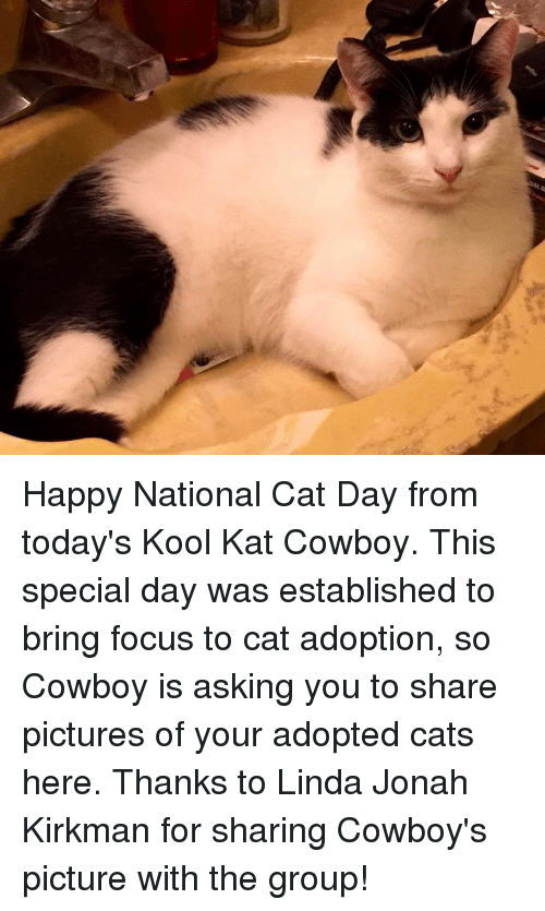 Happy National Cat Day: je Happy National Cat Day from today's Kool Kat Cowboy.  This special day was established to bring focus to cat adoption, so Cowboy is asking you to share pictures of your adopted cats here. Thanks to Linda Jonah Kirkman for sharing Cowboy's picture with the group!