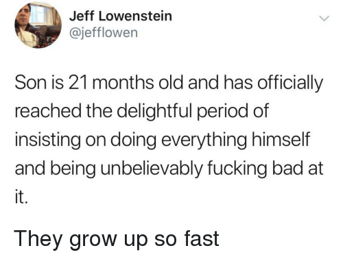 delightful: Jeff Lowenstein  @jefflowen  Son is 21 months old and has officially  reached the delightful period of  insisting on doing everything himself  and being unbelievably fucking bad at  it. They grow up so fast