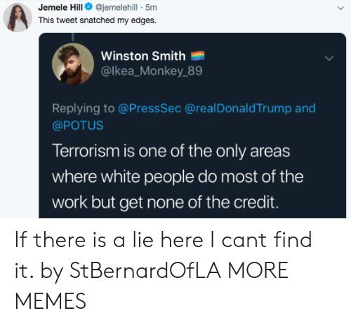 potus: Jemele Hill@jemelehill - 5m  This tweet snatched my edges.  Winston Smith  @lkea_Monkey 89  Replying to @PressSec @realDonaldTrump and  @POTUS  Terrorism is one of the only areas  where white people do most of the  work but get none of the credit. If there is a lie here I cant find it. by StBernardOfLA MORE MEMES