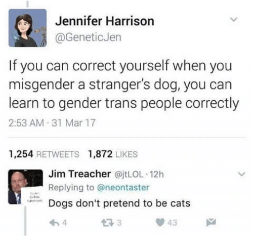 Cats, Memes, and 🤖: Jennifer Harrison  @GeneticJen  If you can correct yourself when you  misgender a stranger's dog, you can  learn to gender trans people correctly  2:53 AM 31 Mar 17  1,254 RETWEETS 1,872 LIKES  Jim Treacher @jtLOL 12h  ーReplying to @neontaster  don't pretend to be cats  わ4