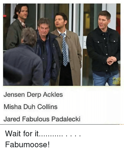 fabulousness: Jensen Derp Ackles  Misha Duh Collins  Jared Fabulous Padalecki Wait for it........... . . . . Fabumoose!