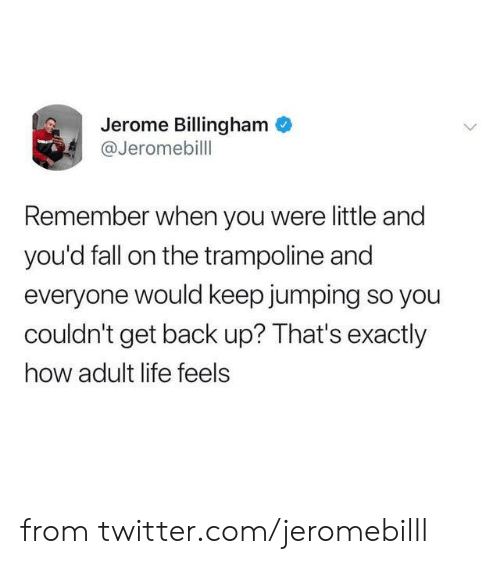 Dank, Fall, and Life: Jerome Billingham  @Jeromebill  Remember when you were little and  you'd fall on the trampoline and  everyone would keep jumping so you  couldn't get back up? That's exactly  how adult life feels from twitter.com/jeromebilll
