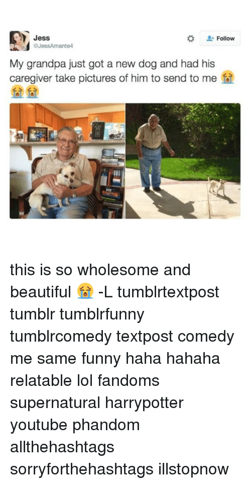 Dogs, Memes, and Grandpa: Jess  Follow  @JessAmante4  My grandpa just got a new dog and had his  caregiver take pictures of him to send to me this is so wholesome and beautiful 😭 -L tumblrtextpost tumblr tumblrfunny tumblrcomedy textpost comedy me same funny haha hahaha relatable lol fandoms supernatural harrypotter youtube phandom allthehashtags sorryforthehashtags illstopnow