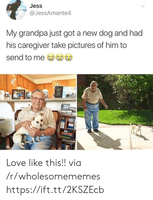 Had His: Jess  @JessAmante4  My grandpa just got a new dog and had  his caregiver take pictures of him to  send to me  De Love like this!! via /r/wholesomememes https://ift.tt/2KSZEcb
